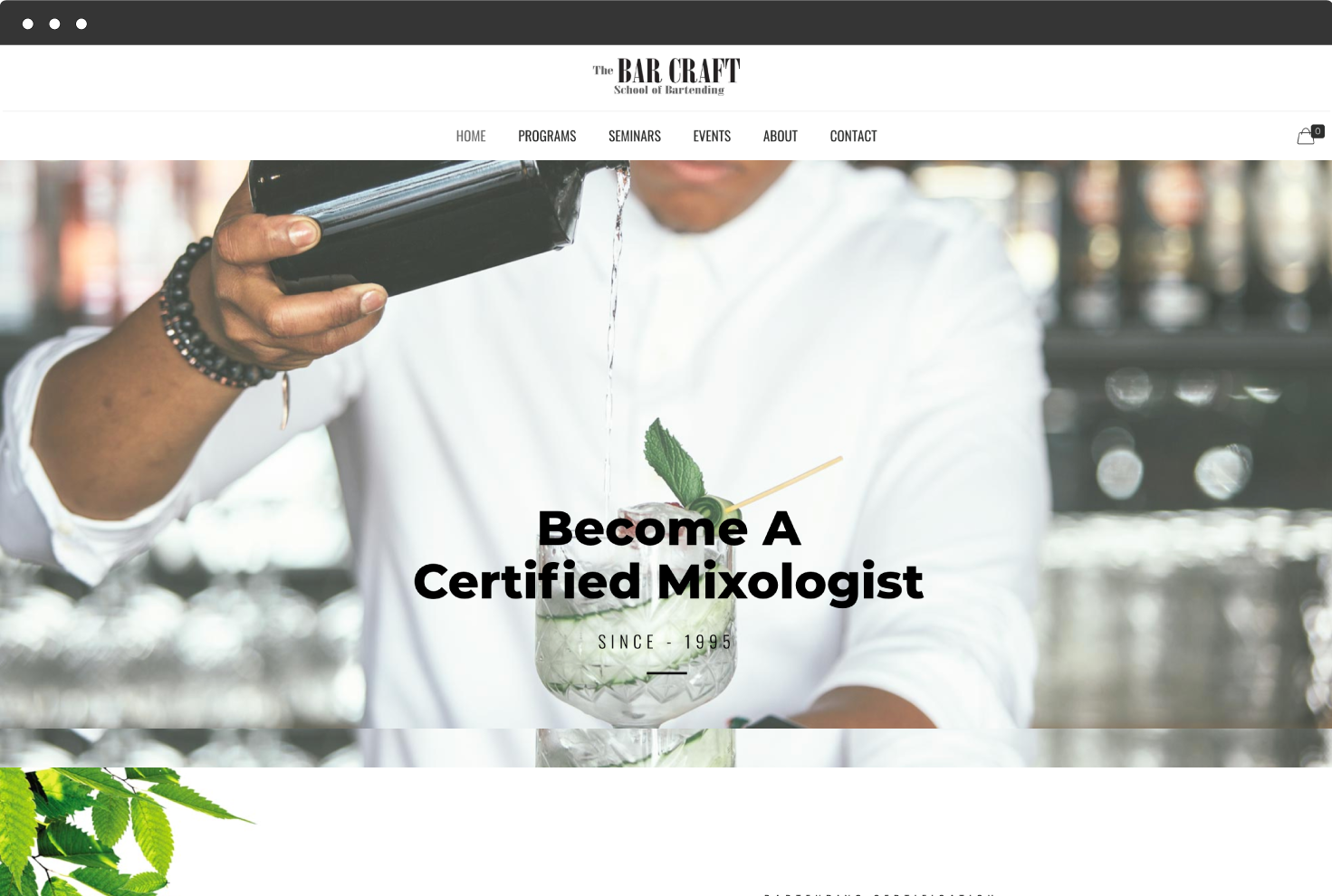 Image of The Bar Craft's Website