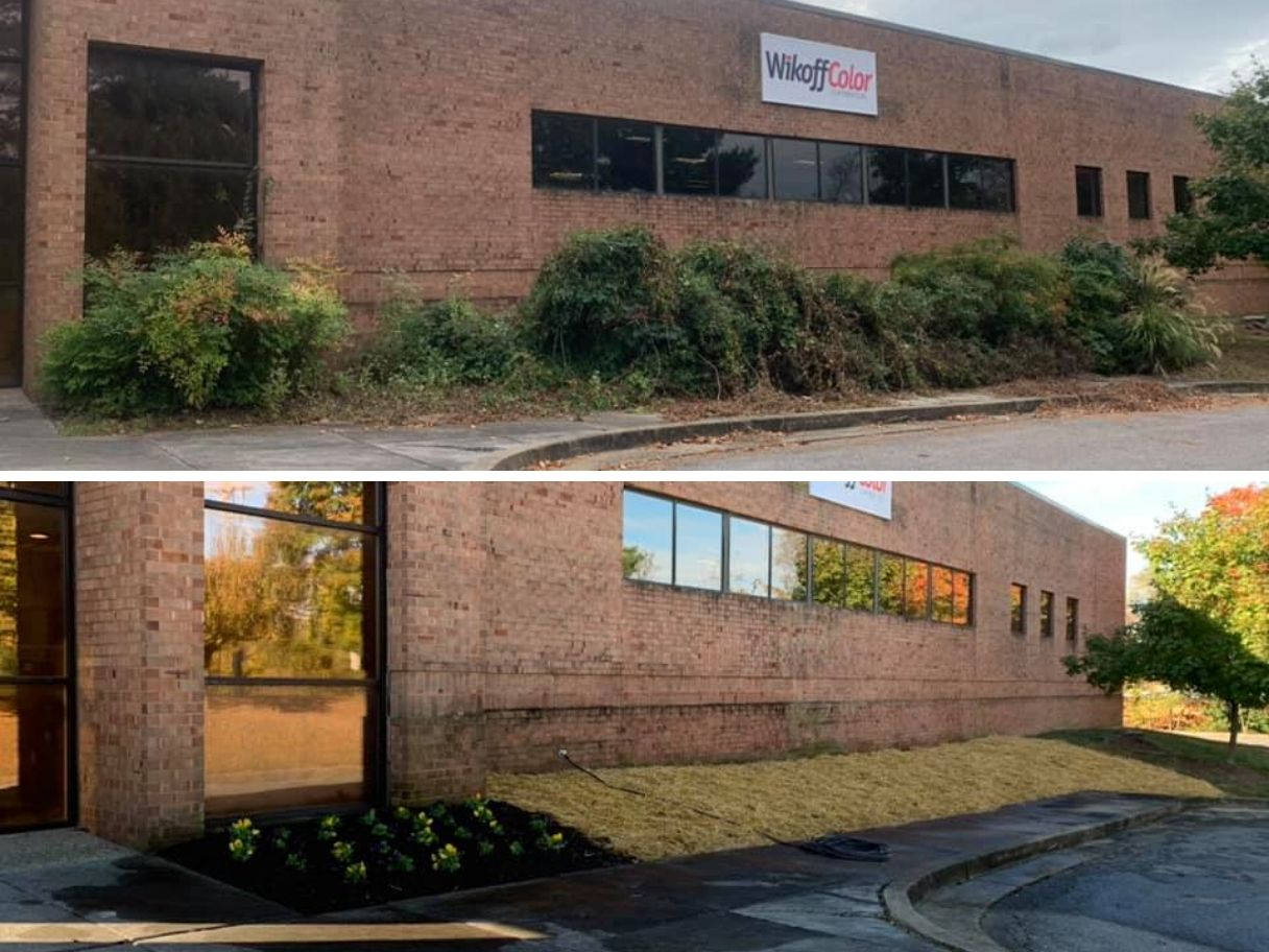commercial-landscaping-services-before-and-after-brush-removal-with-new-plantings