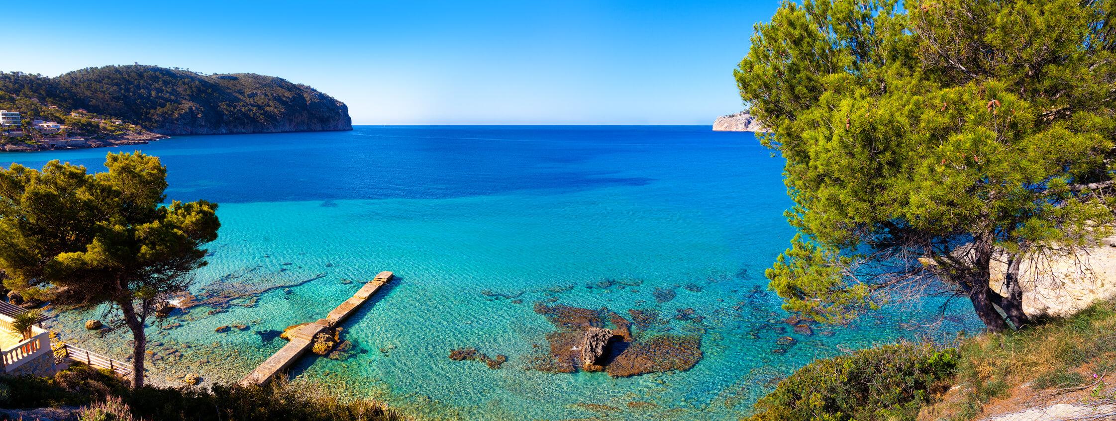 Traut Immobilien Mallorca