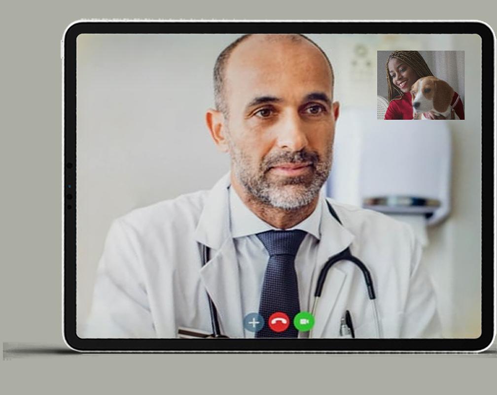 Veterinary telemedicine in USA & Canada