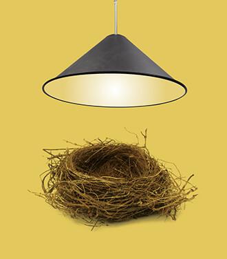 A pendant cone light by Tom Dixon shining on a bird's nest.