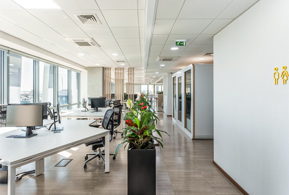 A modern and light open plan workspace with black planters as dividers and vertical wooden beam partitions.