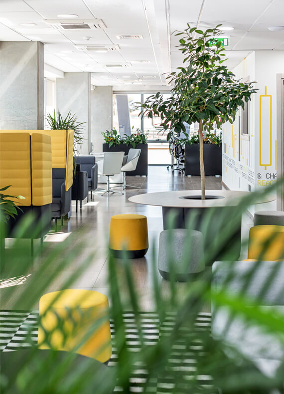 An atmospheric and motivating work environment with a diversity of work setups, lots of plants and yellow accents.