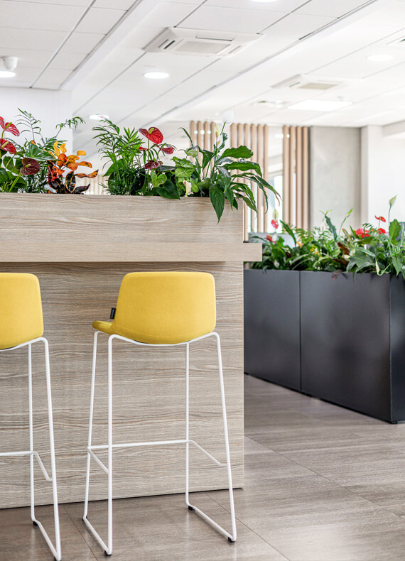 On office area with a custom-made wooden partition with plants and an integrated high counter surface with yellow bar stools.