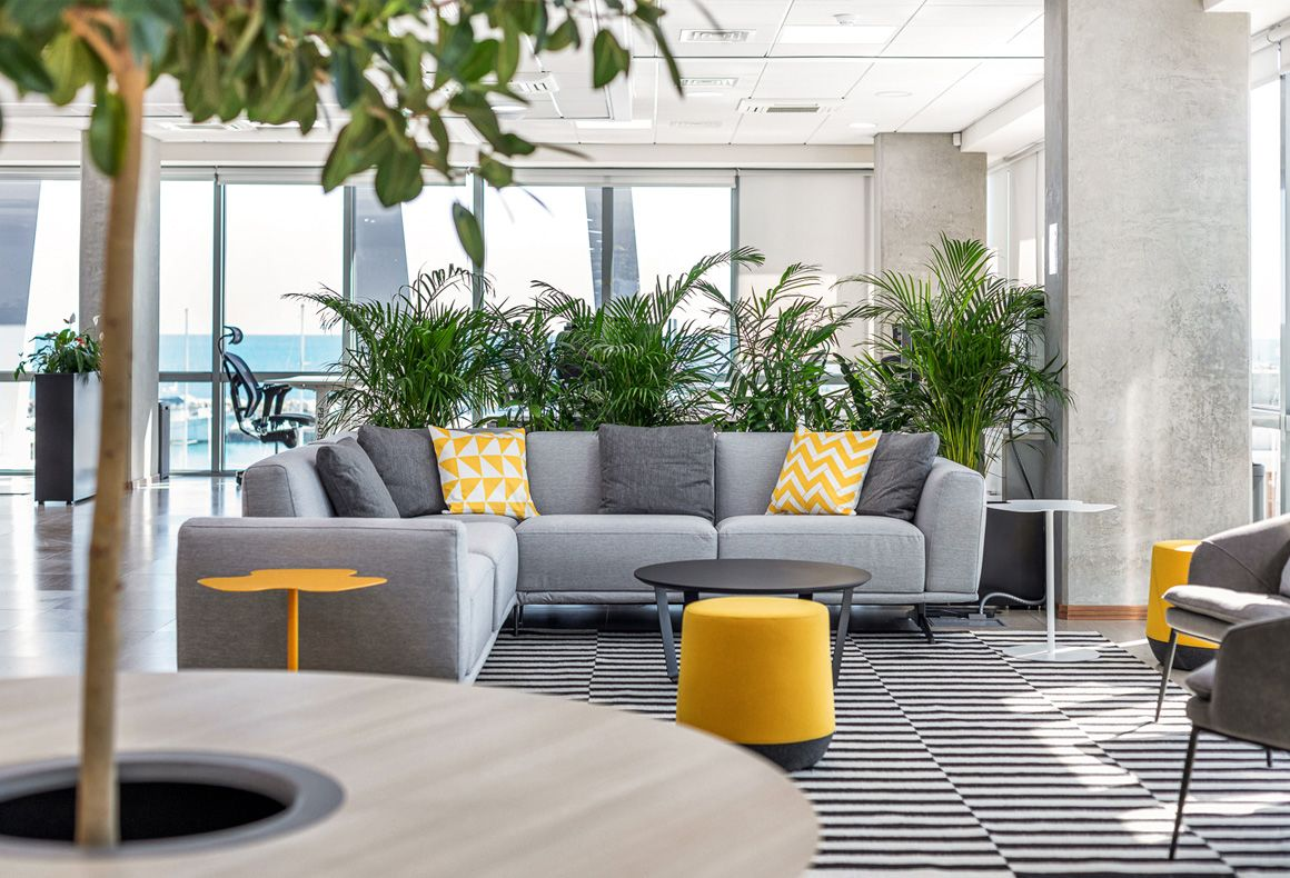 A light-filled modern office lounge area in a black, grey and yellow colour theme with lots of plants.