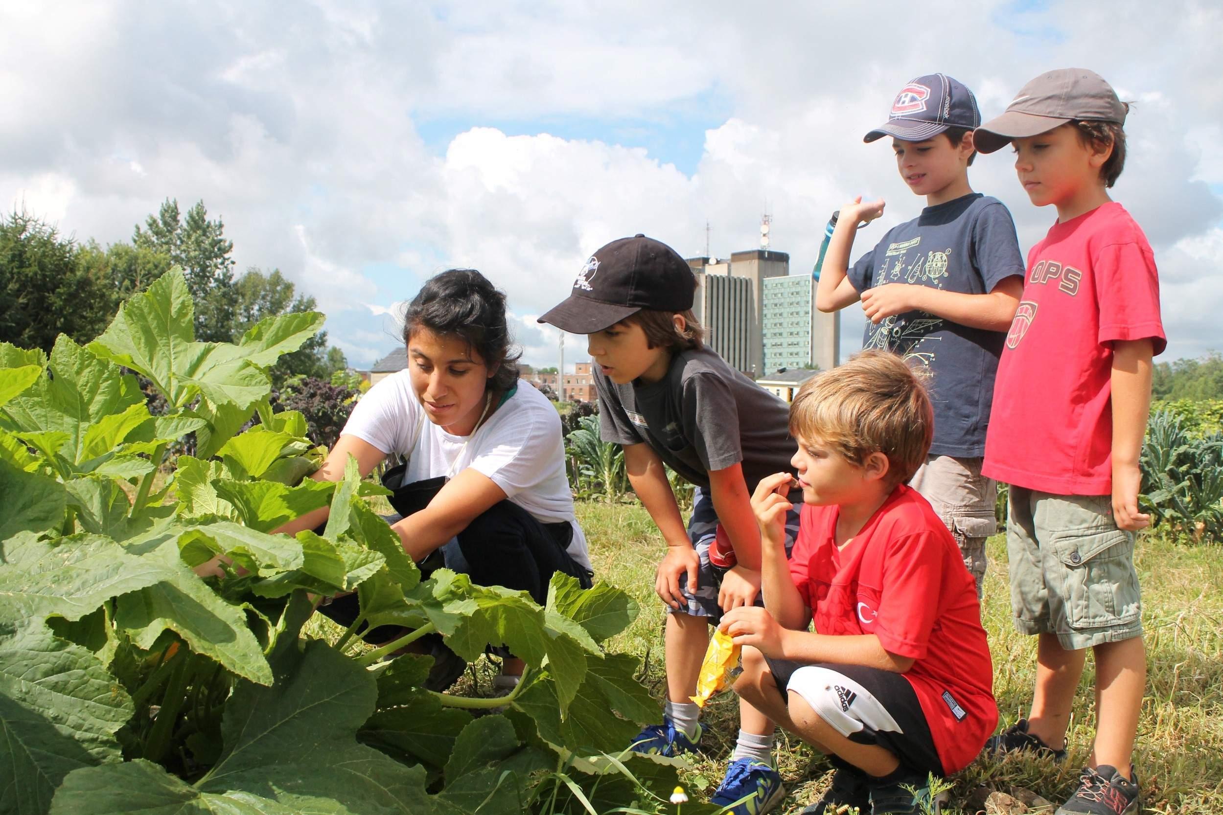 éducation expérientielle agriculture