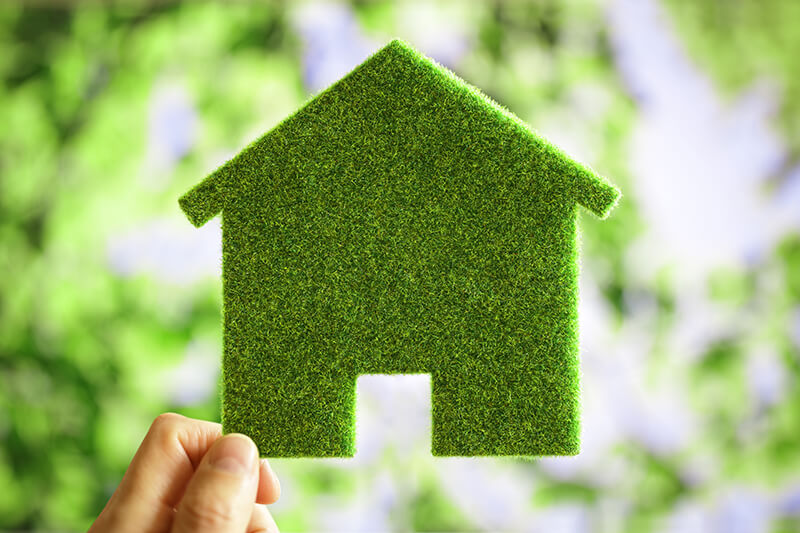 Eine grasgrüne Platte in Form eines Hauses.