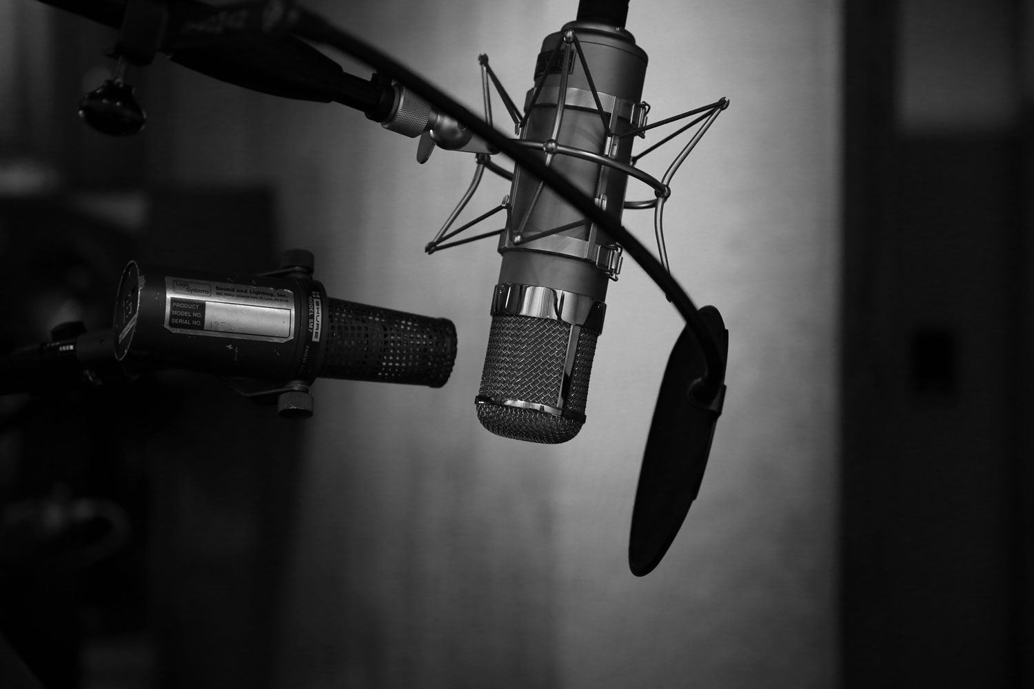 Black and white photo of a microphone.