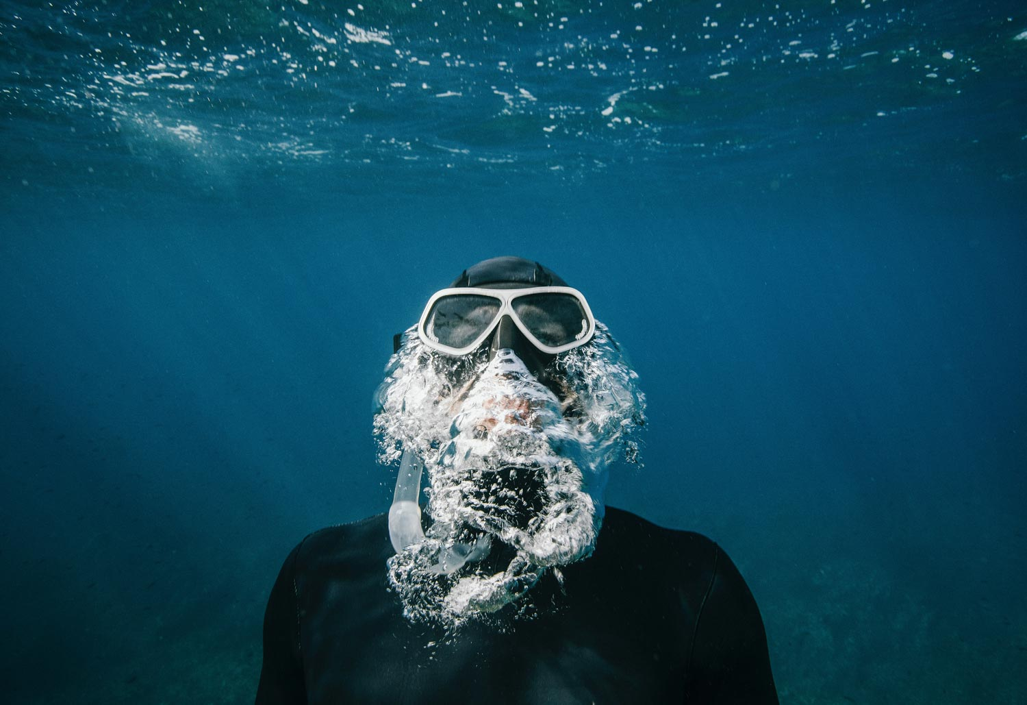 Photo of a diver underwater.