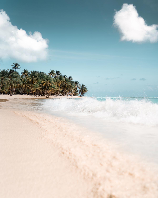 Photo of a tropical beach.