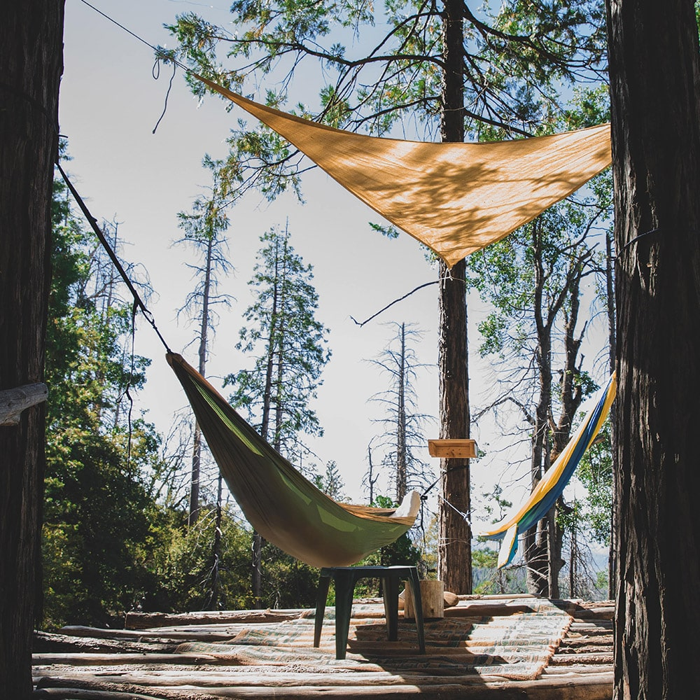 Canopy Tree Fort