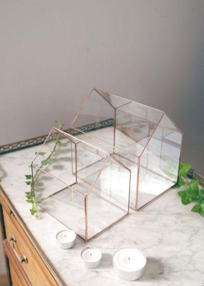 © photo et terrariums : Alexa Workshop