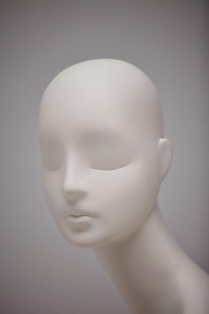 Aloof 6000 mannequin head