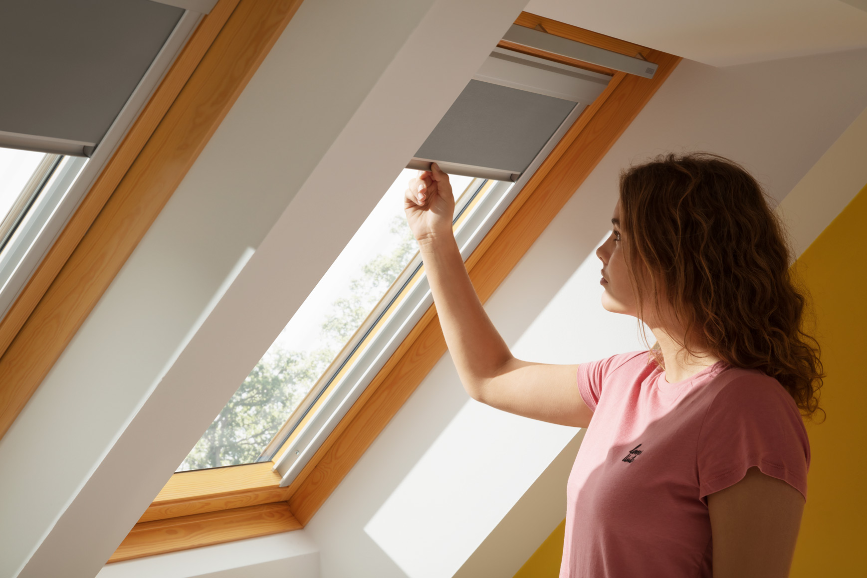 Velux Blinds East Sussex