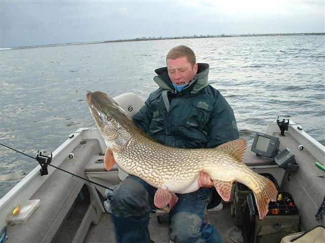 This is a Northern Pike!!