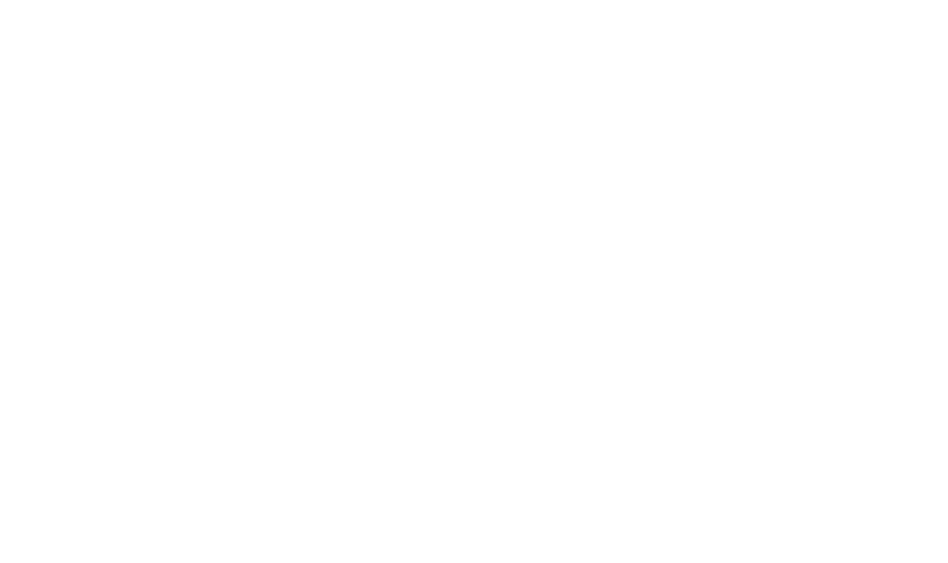 Tamarindo Group logo