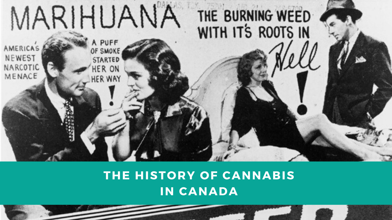 The History of Cannabis in Canada
