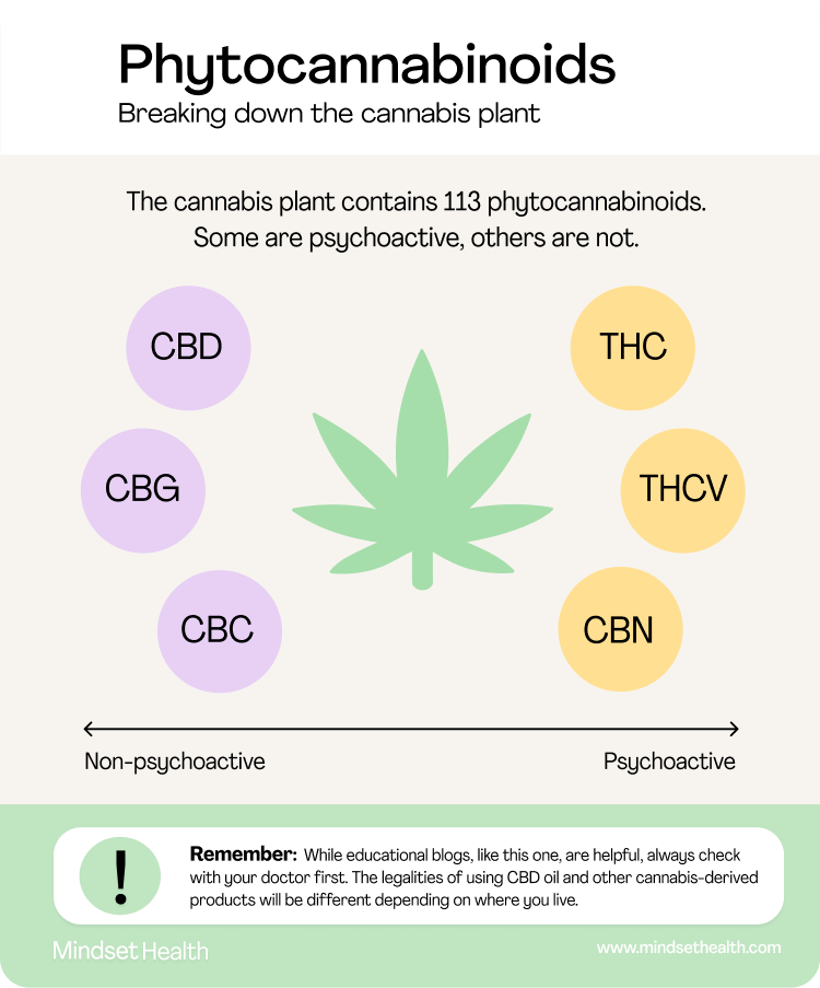 A diagram showing which compounds of cannabis are psychoactive, and which are not.