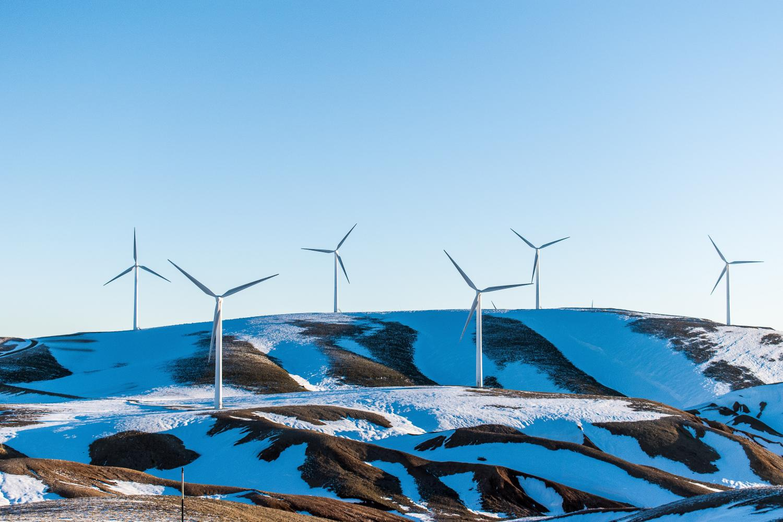 wind farm on snowy sunny rolling hillside