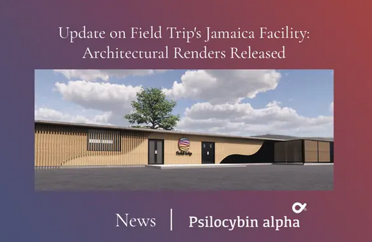 Update on Field Trip's Jamaica Facility – Architectural Renders Released Update on Field Trip's Jamaica Facility – Architectural Renders Released