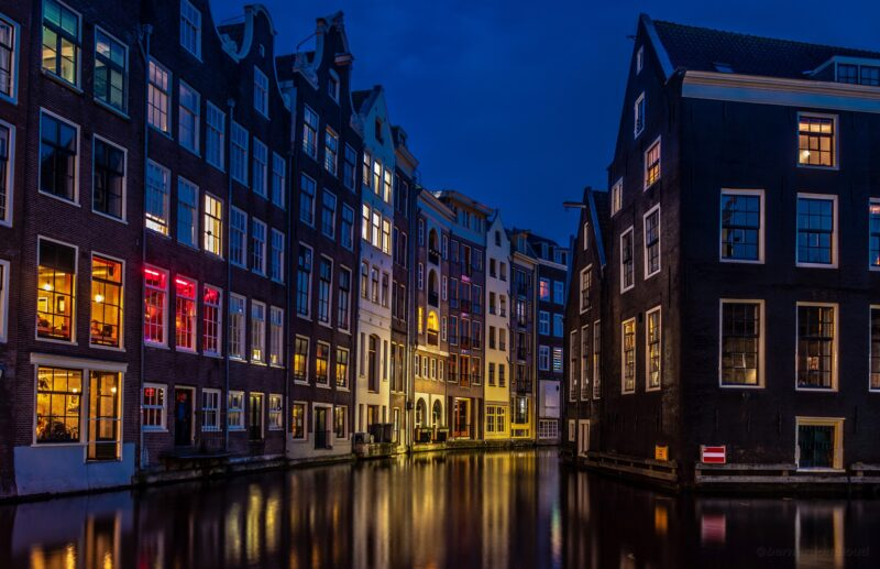 Truffle Report: Field Trip Health Expands into Dutch Truffle Market