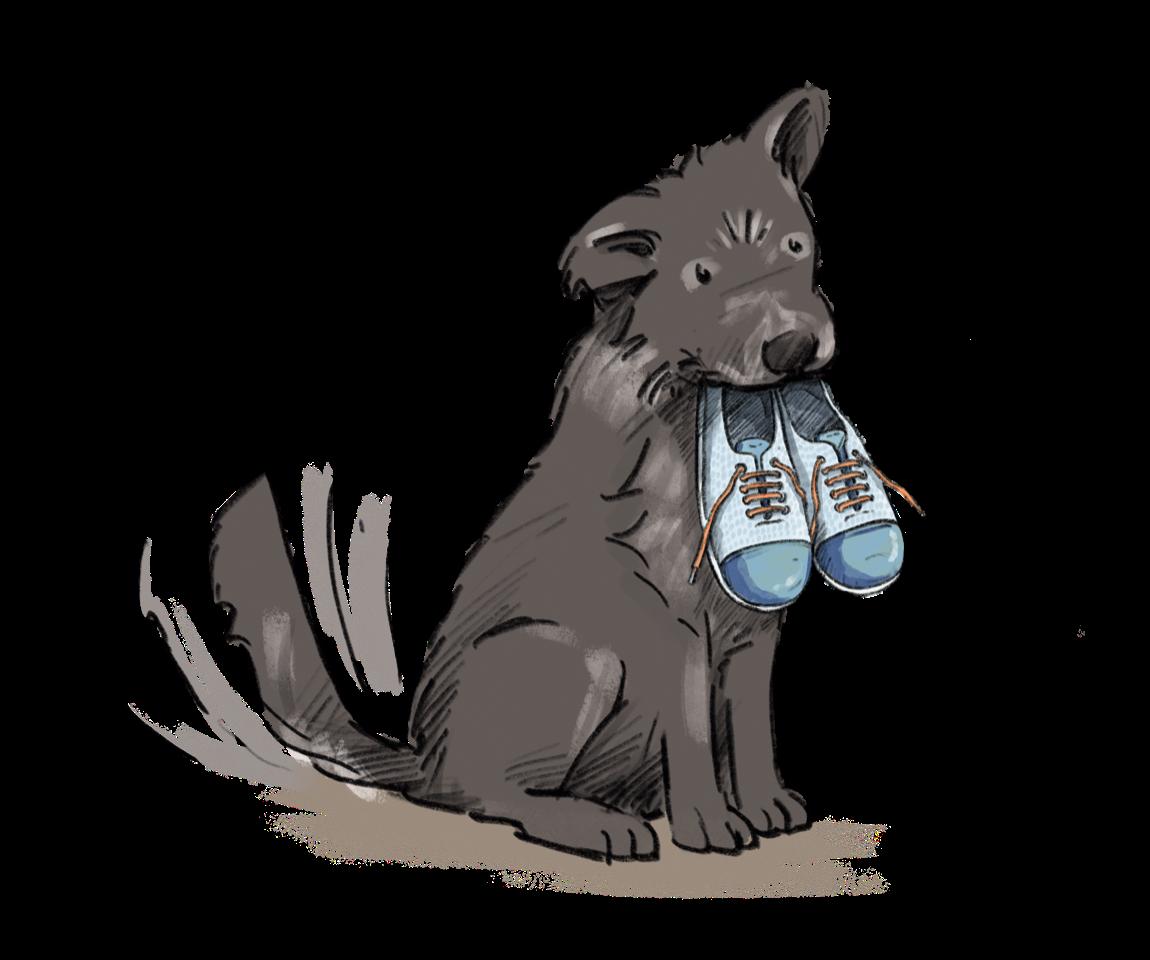 Hund mit Schuhen in Mund