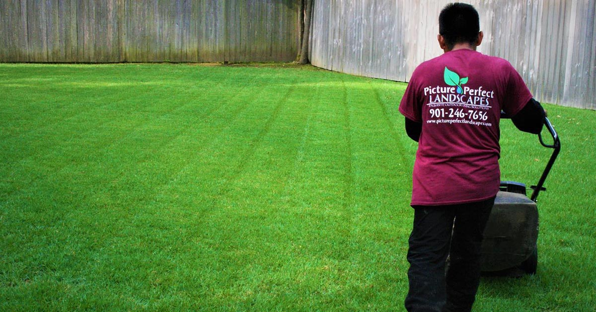 memphis lawn mowing