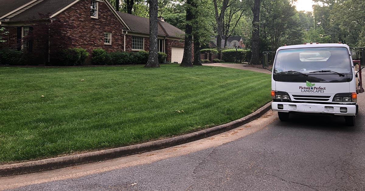 Memphis Lawn Fertilization