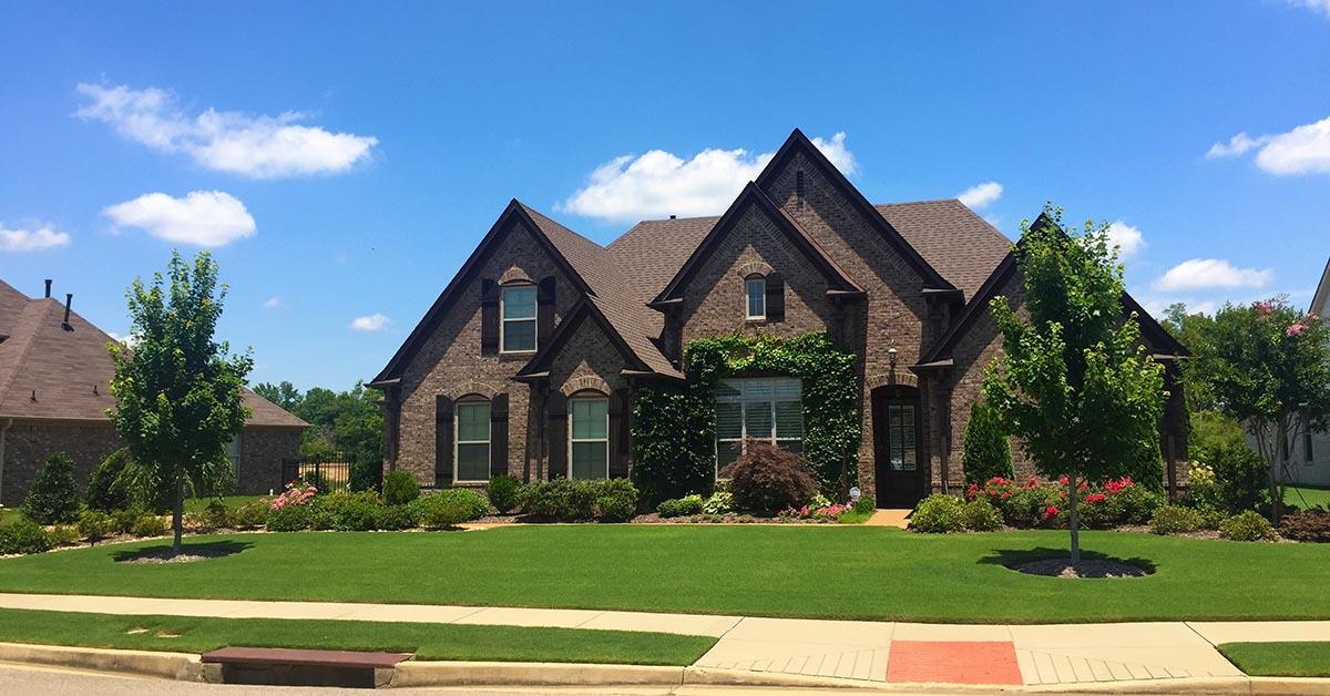 Memphis Lawn Overseeding