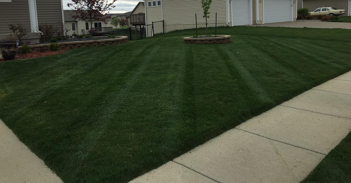 lawn fertilization company