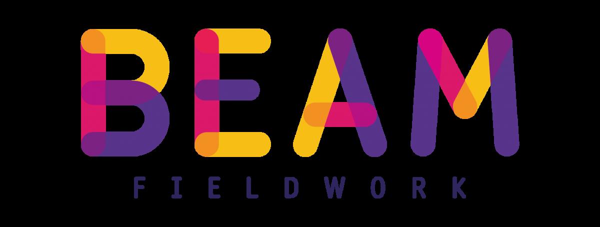 Beam Fieldwork