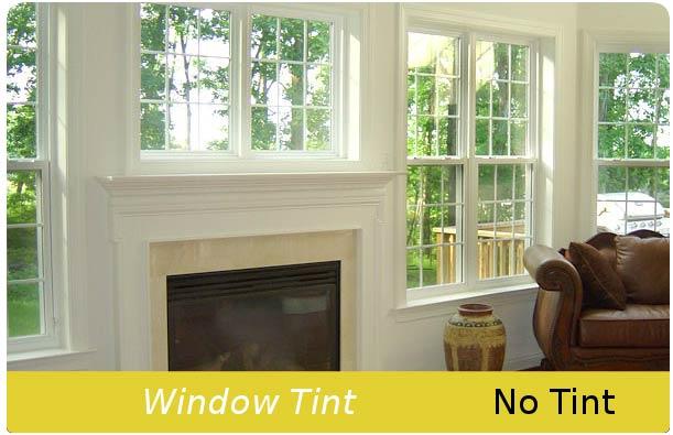 No window tint
