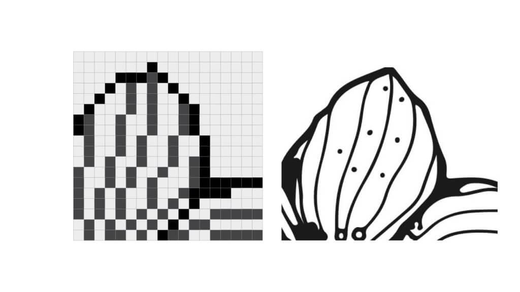 grid of pixel versus vector paths