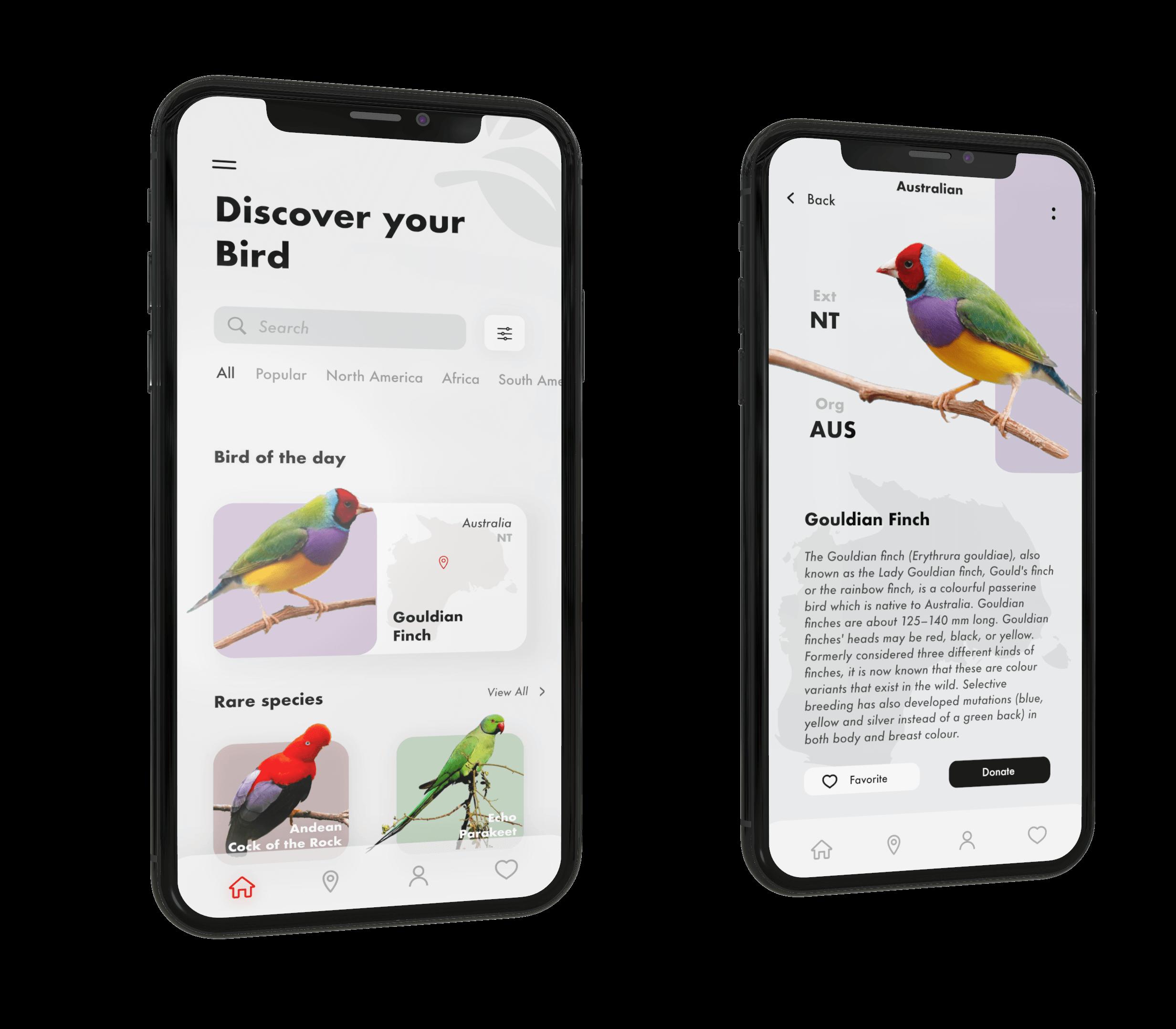 design tips 2019