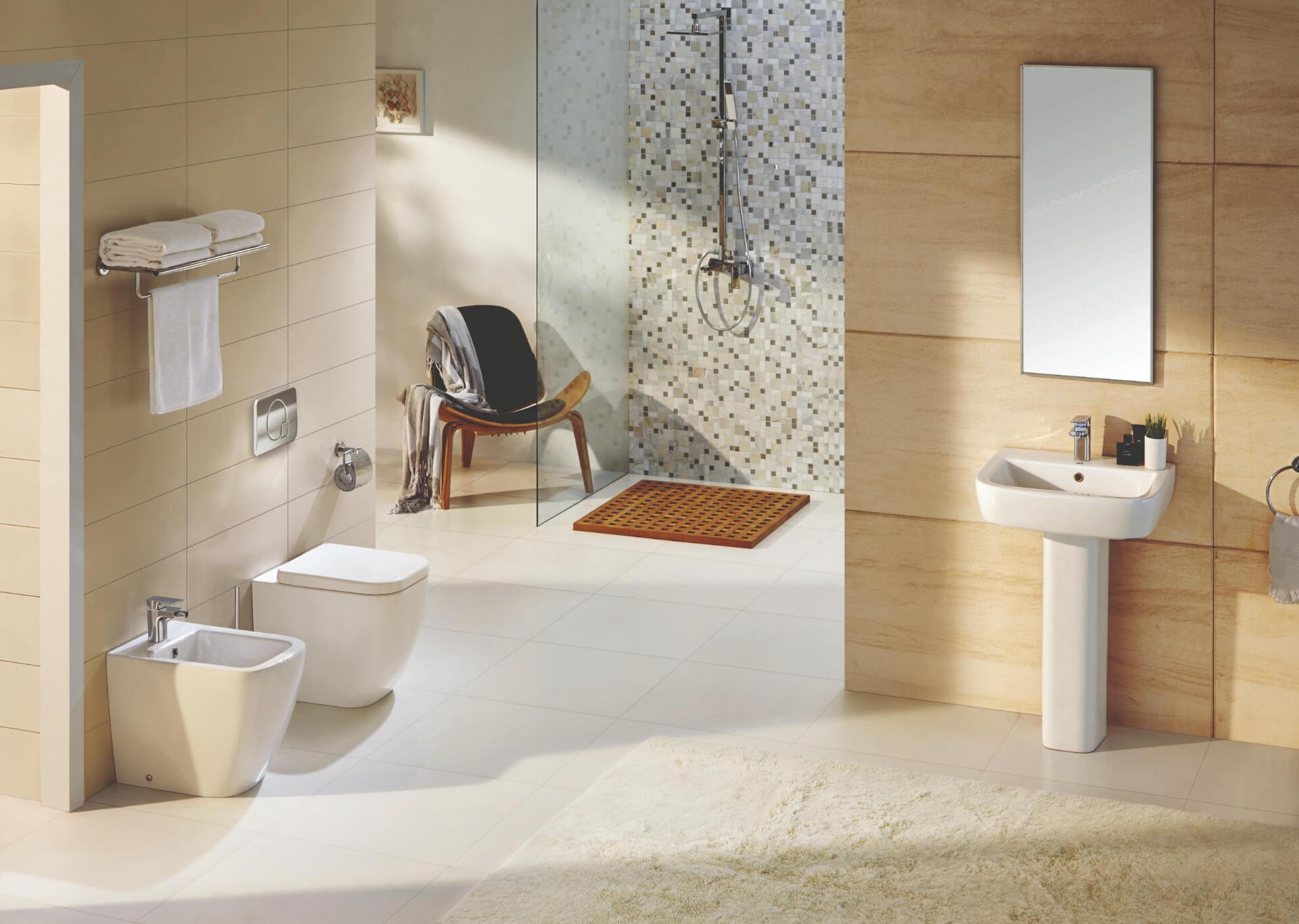 Modern Sanitary Wear in Bathroom