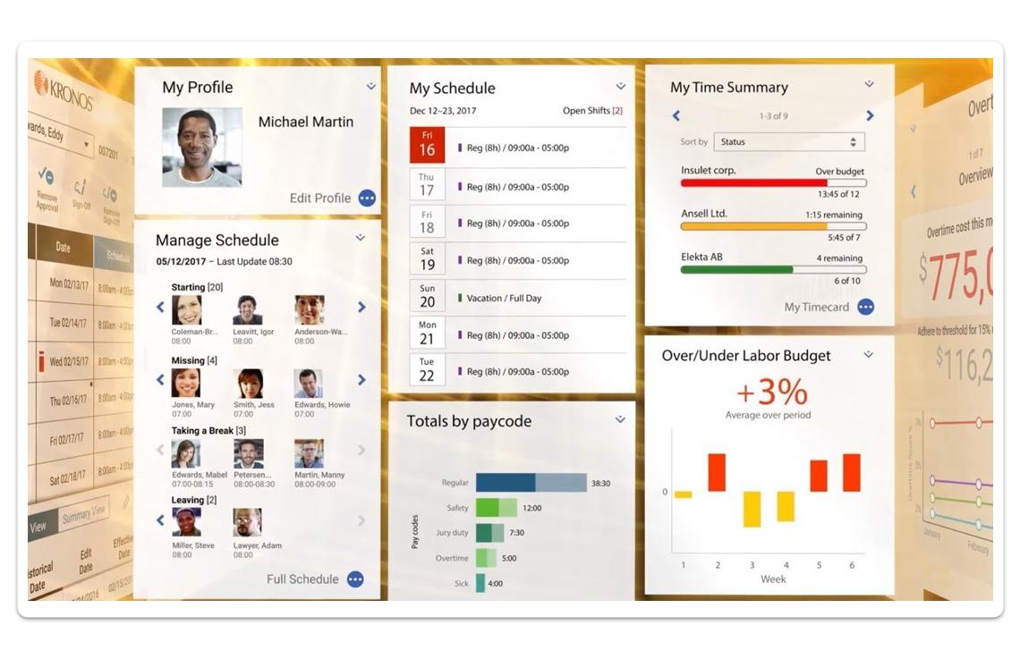 Kronos workforce management solution sample profile view.