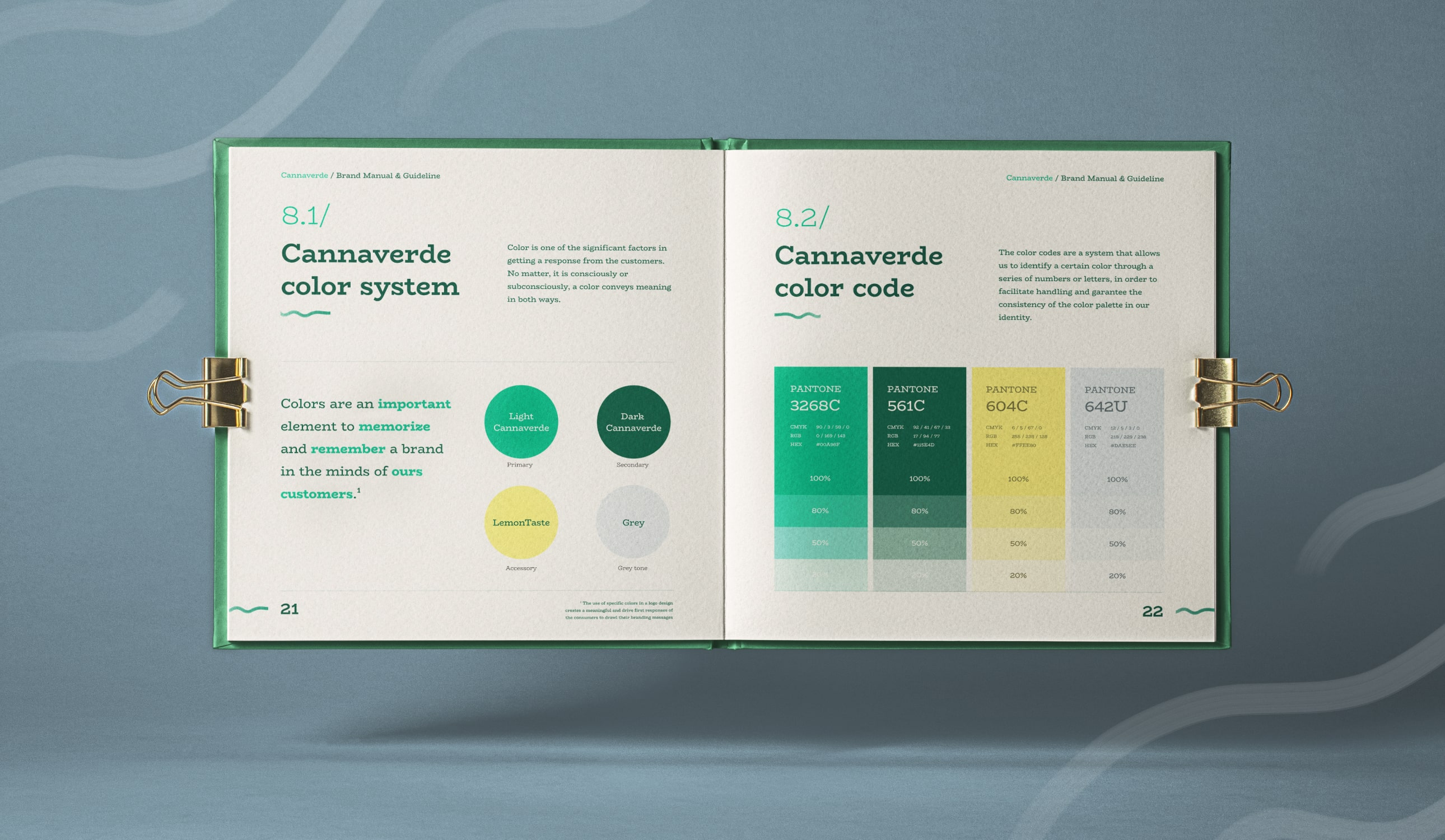 A brand Identity guide representing the primary and secondary colors.