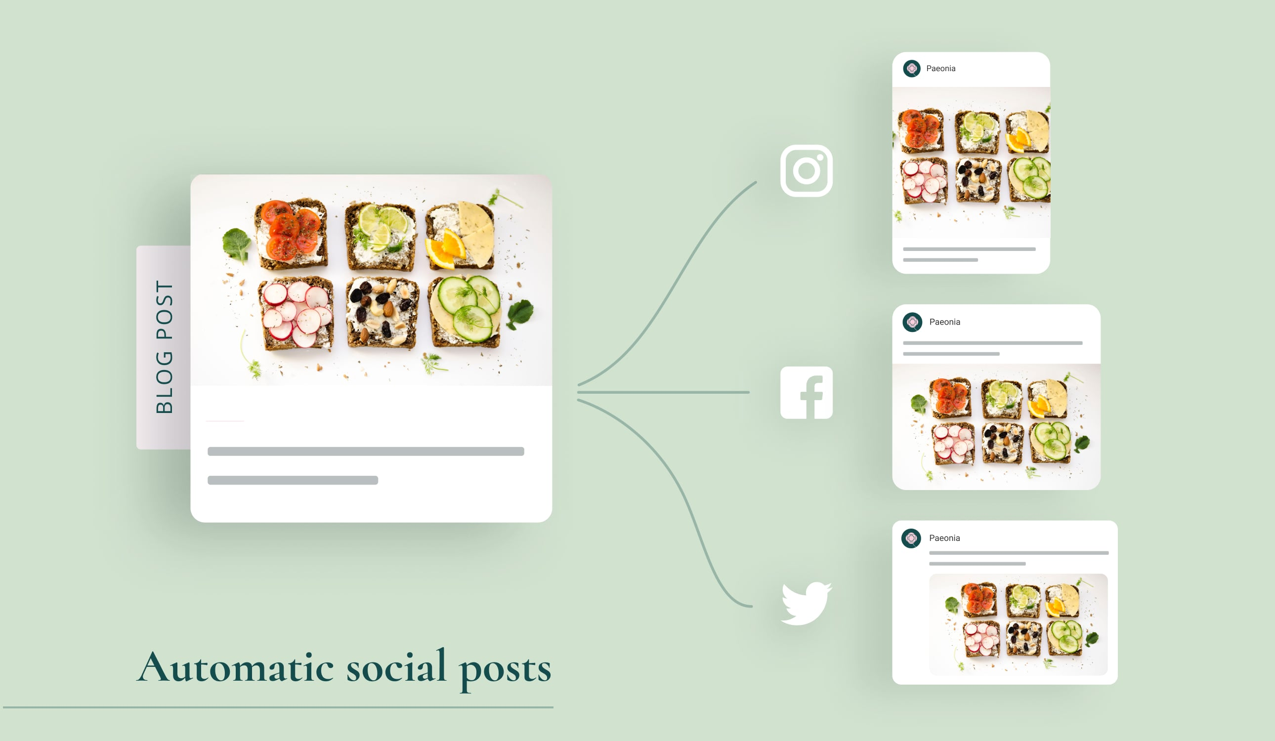 A blog post repurposed for different social media - Instagram, Facebook and Twitter.