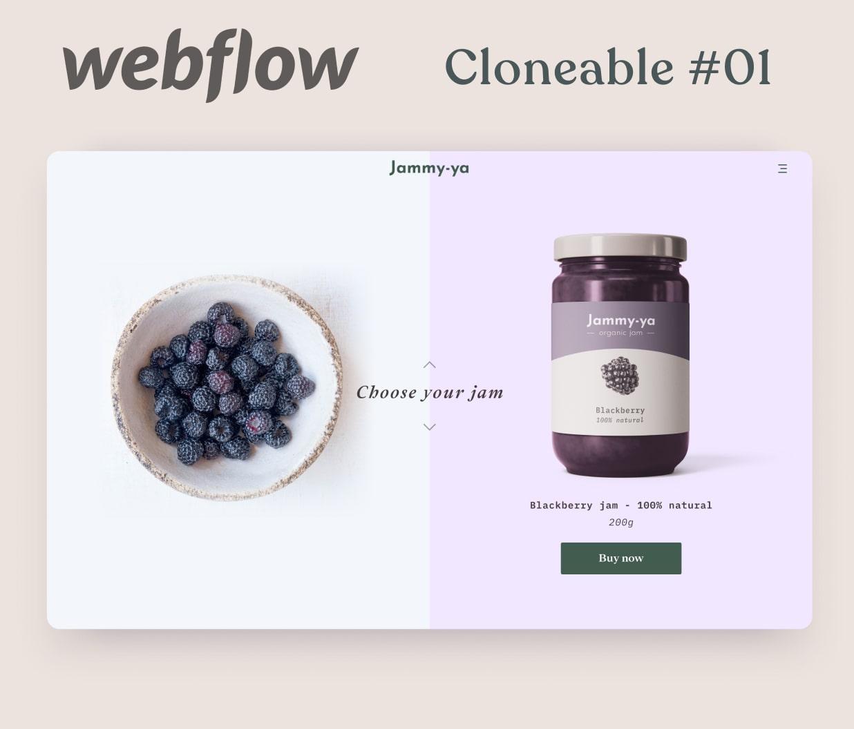 Webpage mockup of organic jam products