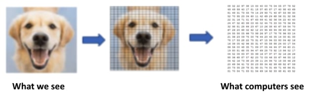 Illustration of how a computer sees an image