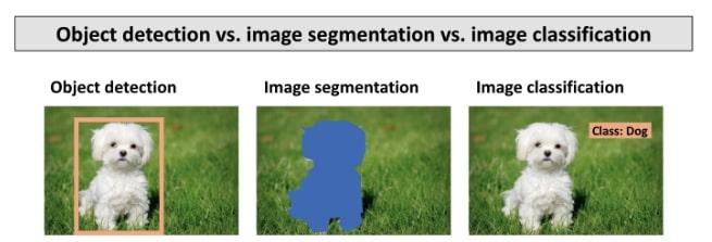 Classification vs detection vs segmentation in AI techniques