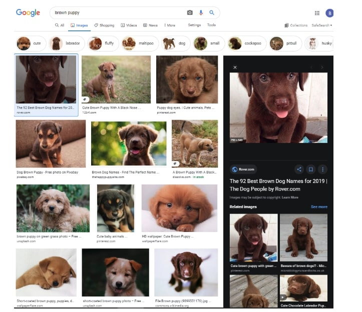 Image search on google