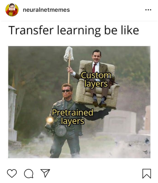 Transfer Learning AI meme