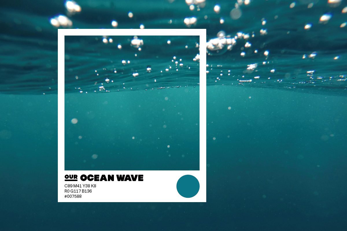 SPX Agency Work: OurCampus Colour Ocean Wave