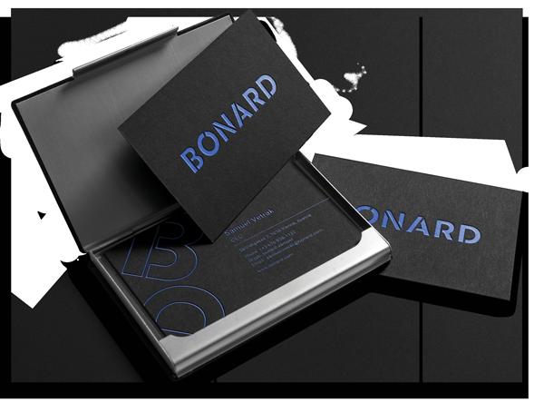 SPX Agency Work: Bonard business cards