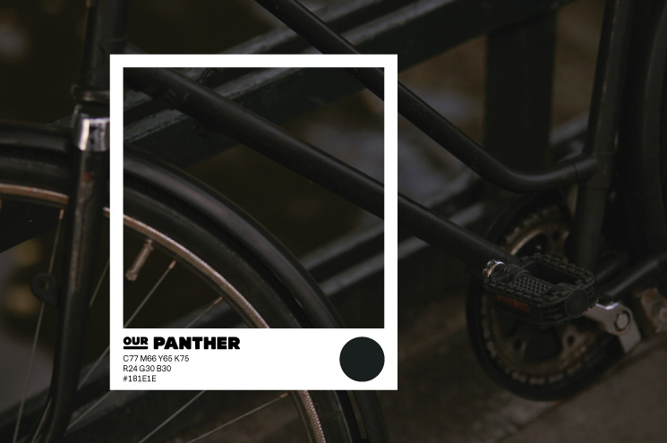 SPX Agency Work: OurDomain Colour Panther, bike