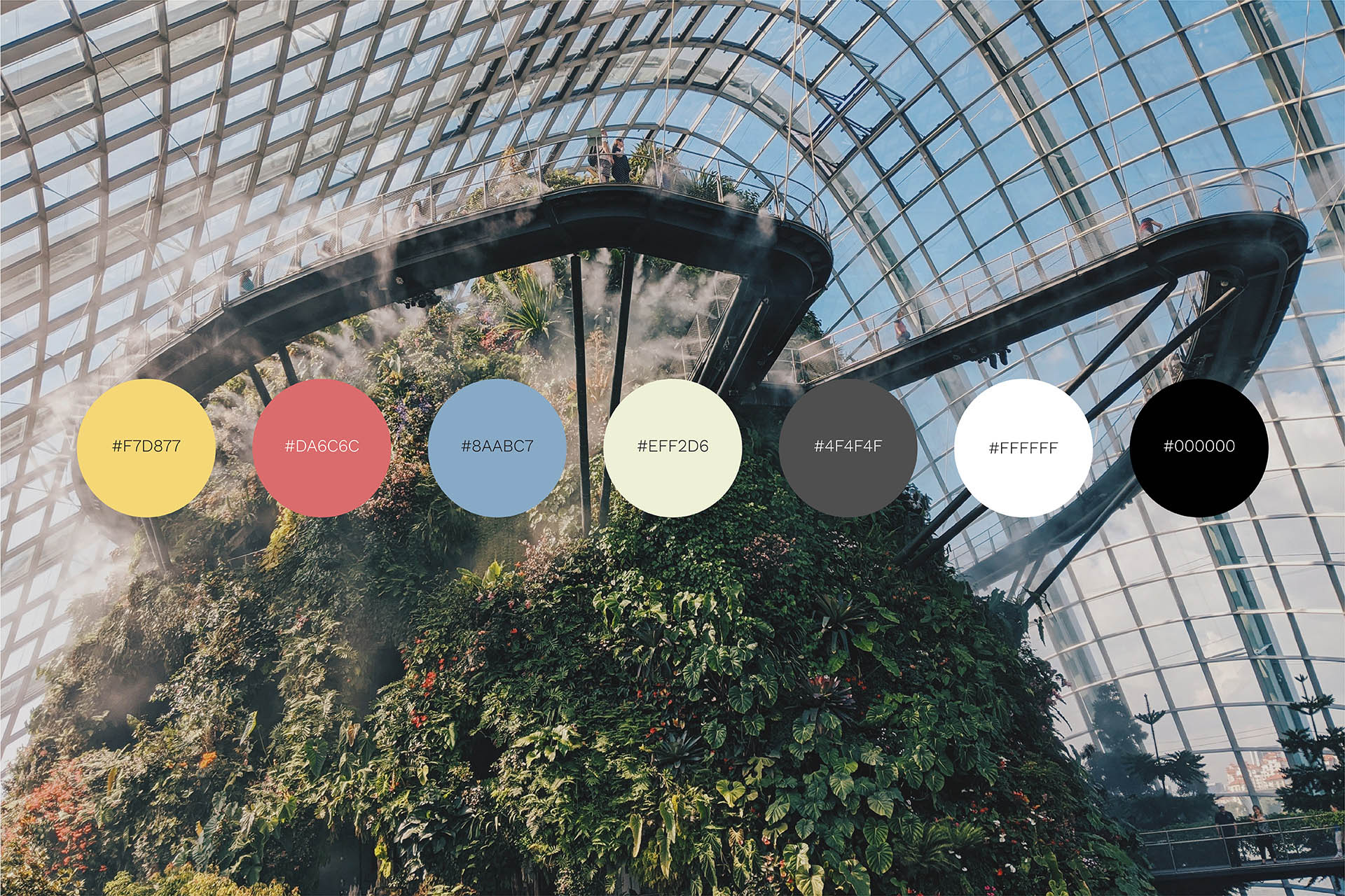Coliving Insights Colours with plants in the background by SPX Agency