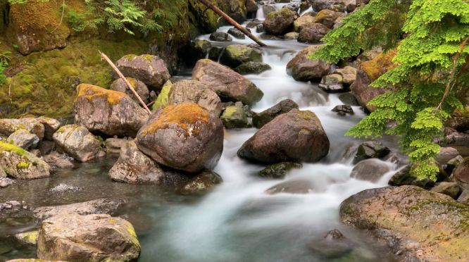 Long exposure photography of a stream in the forest