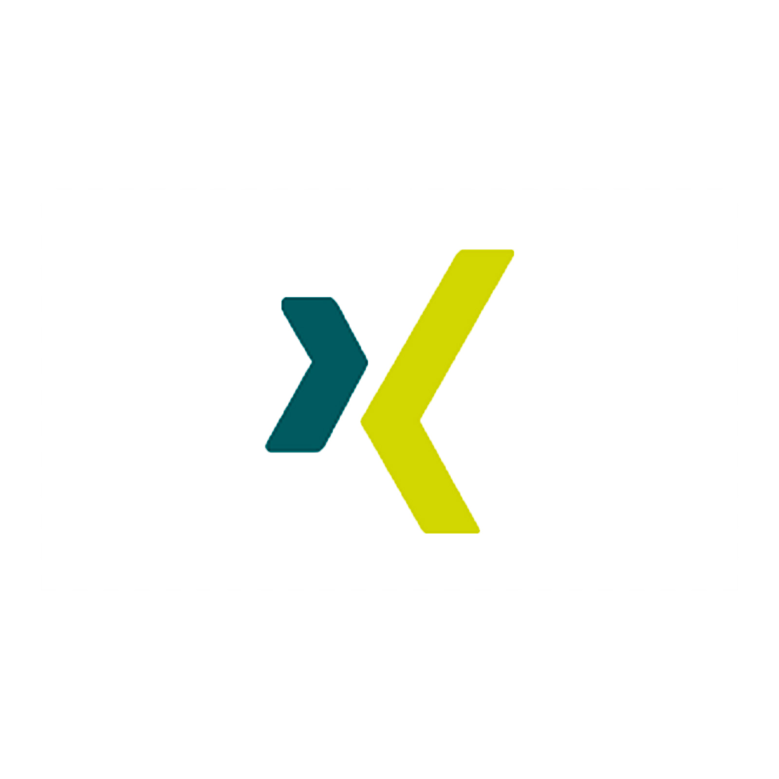 Another business-oriented social networking website, XING, launches. This service is more popular in Europe.