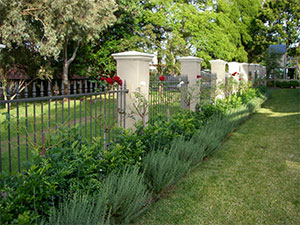 Feature fencing in a front garden of a home